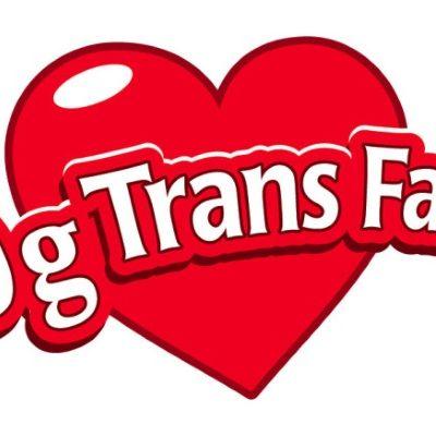 trans-fat-free